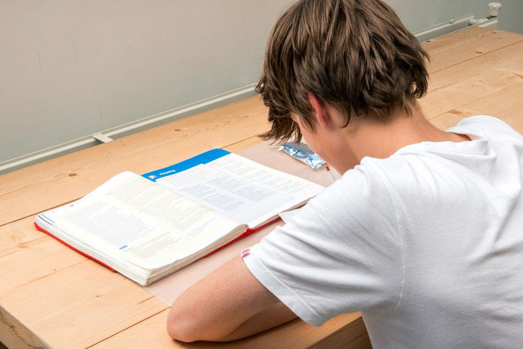 Huiswerkbegeleiding scholier jongen